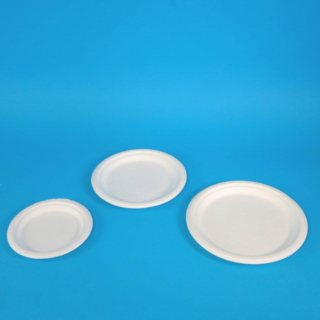 Bio Bagasse Teller rund weiß holzfrei versch. Größen